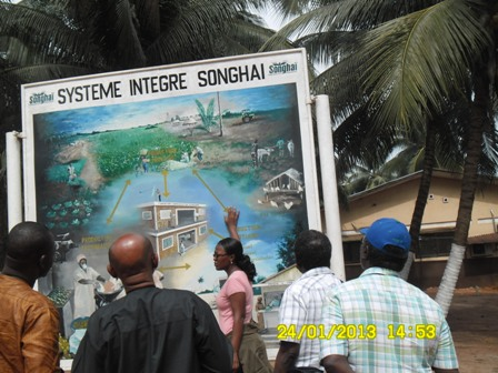 songhai visit