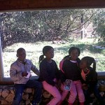 DEC FAMILY 2